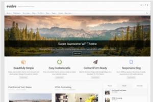 Los mejores themes gratuitos de WordPress: Evolve