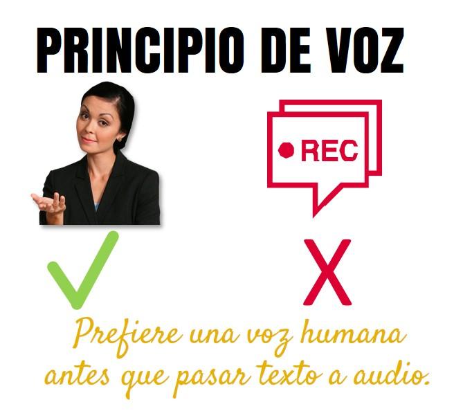 Principio de voz