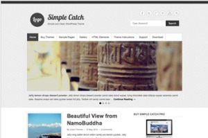 Los mejores themes gratuitos de WordPress: Simple Catch